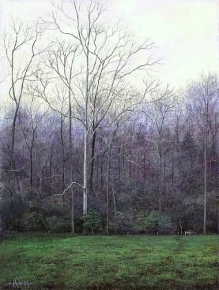 JMK_Sycamore in Spring, Copyright 2002